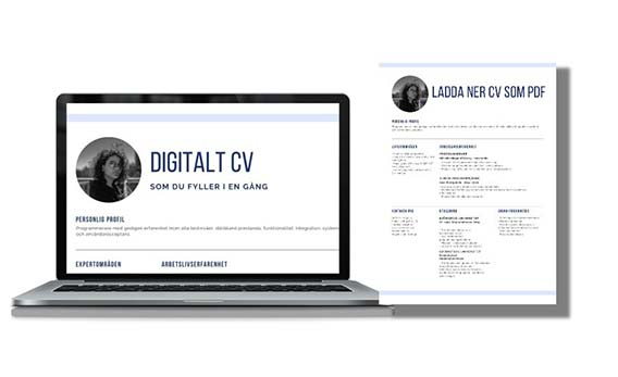 Digital CV that you fill in once